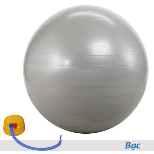 Bóng tập yoga/gym Đài Loan trơn 65cm/75cm - Màu bạc