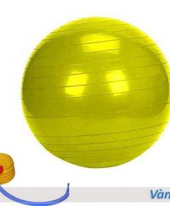 Bóng tập yoga/gym Đài Loan trơn 65cm/75cm - Màu vàng